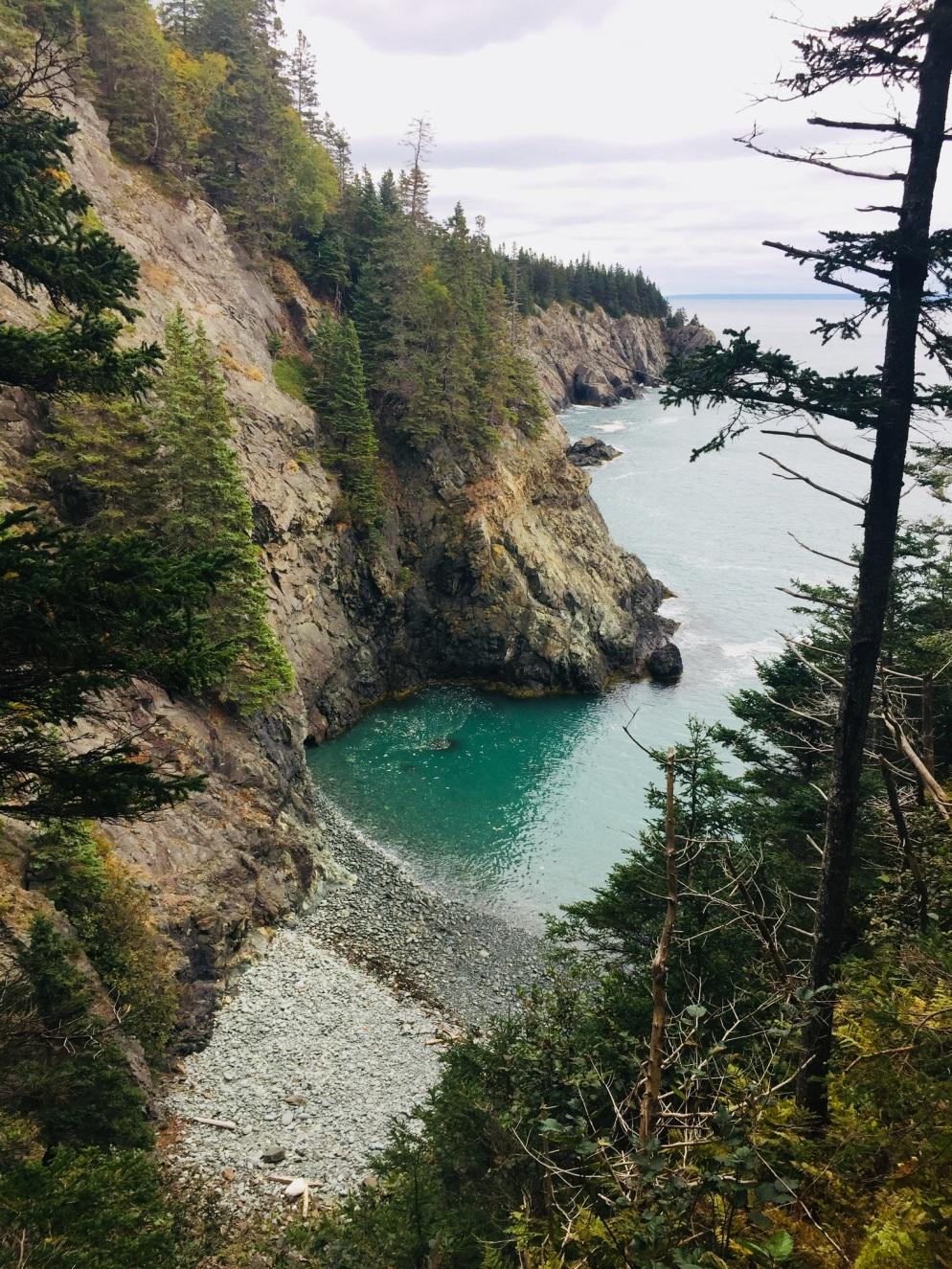 Ocean view from Coastal Trail, Cutler Coast Public Lands