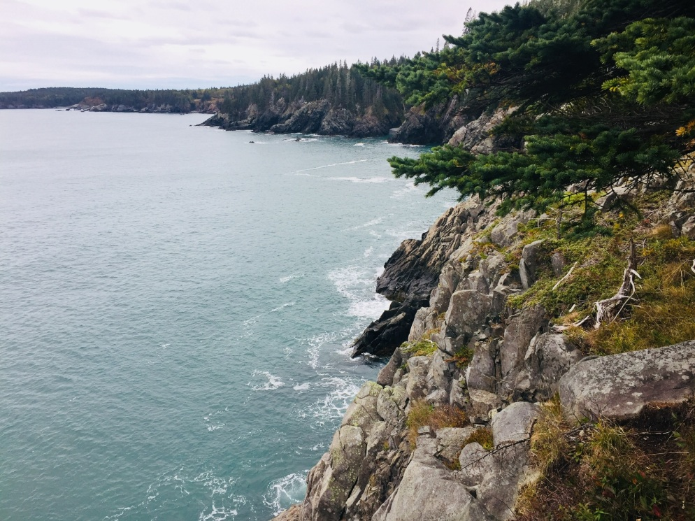 Coastal Trail view to south of Cutler Coast Public Lands