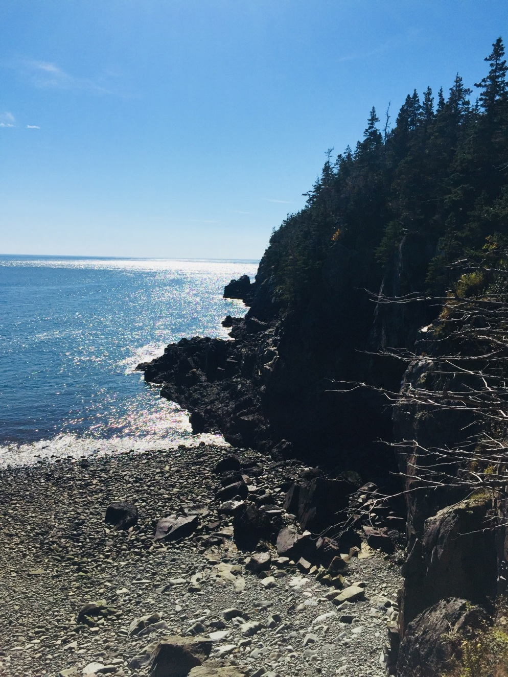 Rocky beach off the Coastal Trail, Quoddy Head State Park.