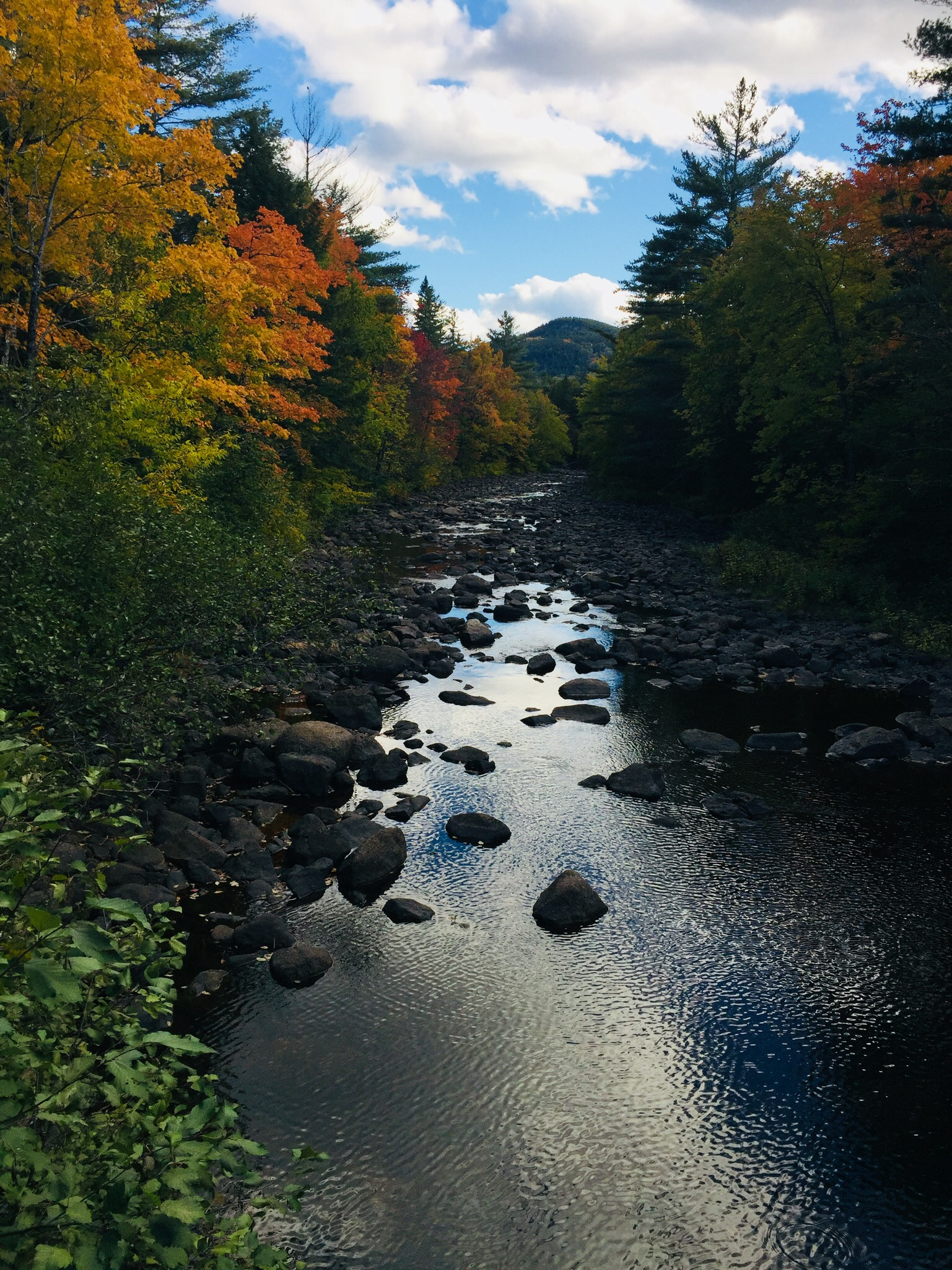 Fall colors on Pollywog Stream, 100 Mile Wilderness