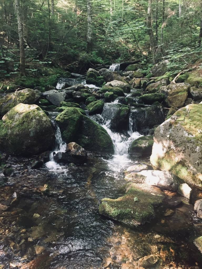 Mountain stream, Mount Abram, Kingfield, ME
