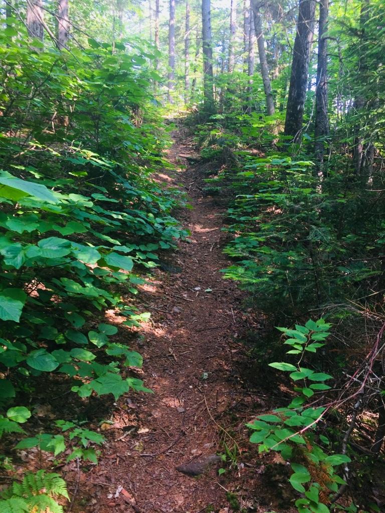 Fire Warden's Trail, Mount Abram, Kingfield, ME