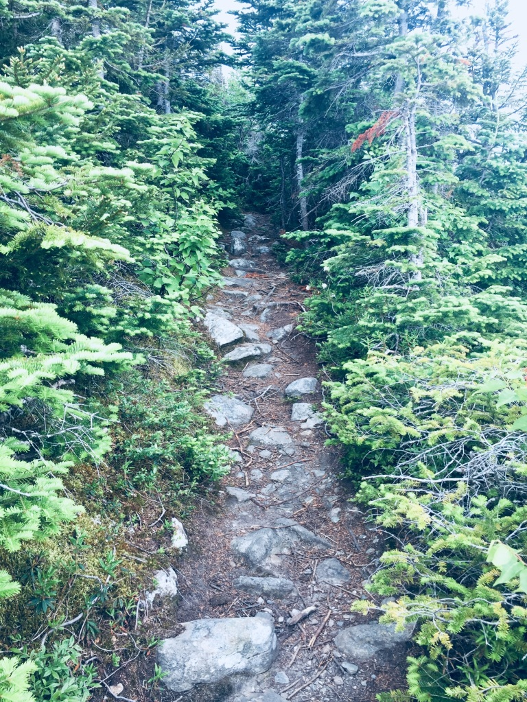 Narrow path in the alpine area of Mount Abram.