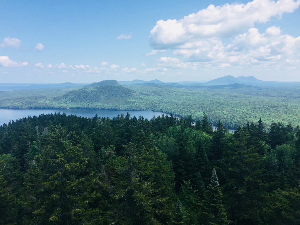 View from summit fire tower, Mount Kineo