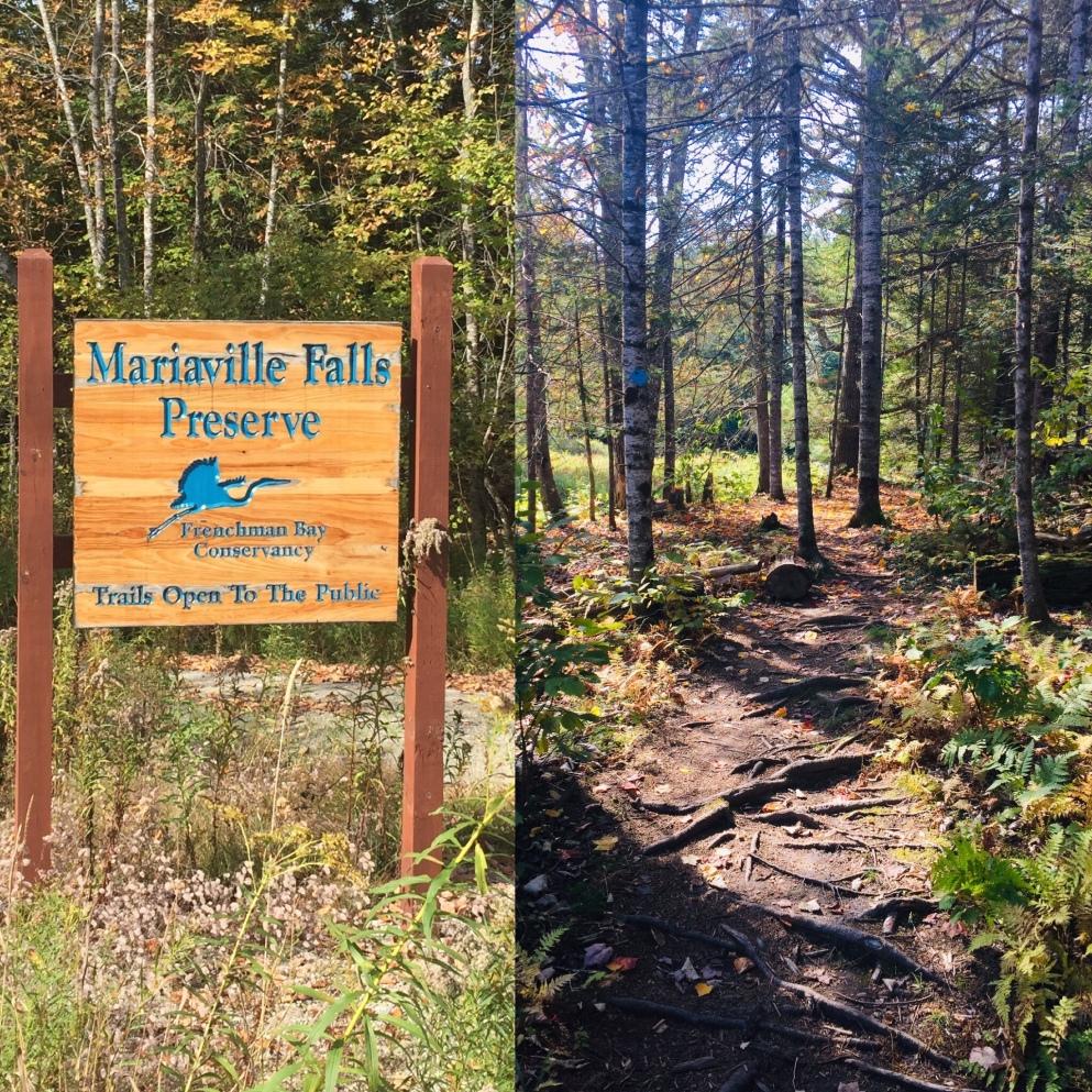Mariaville Falls Preserve, ME