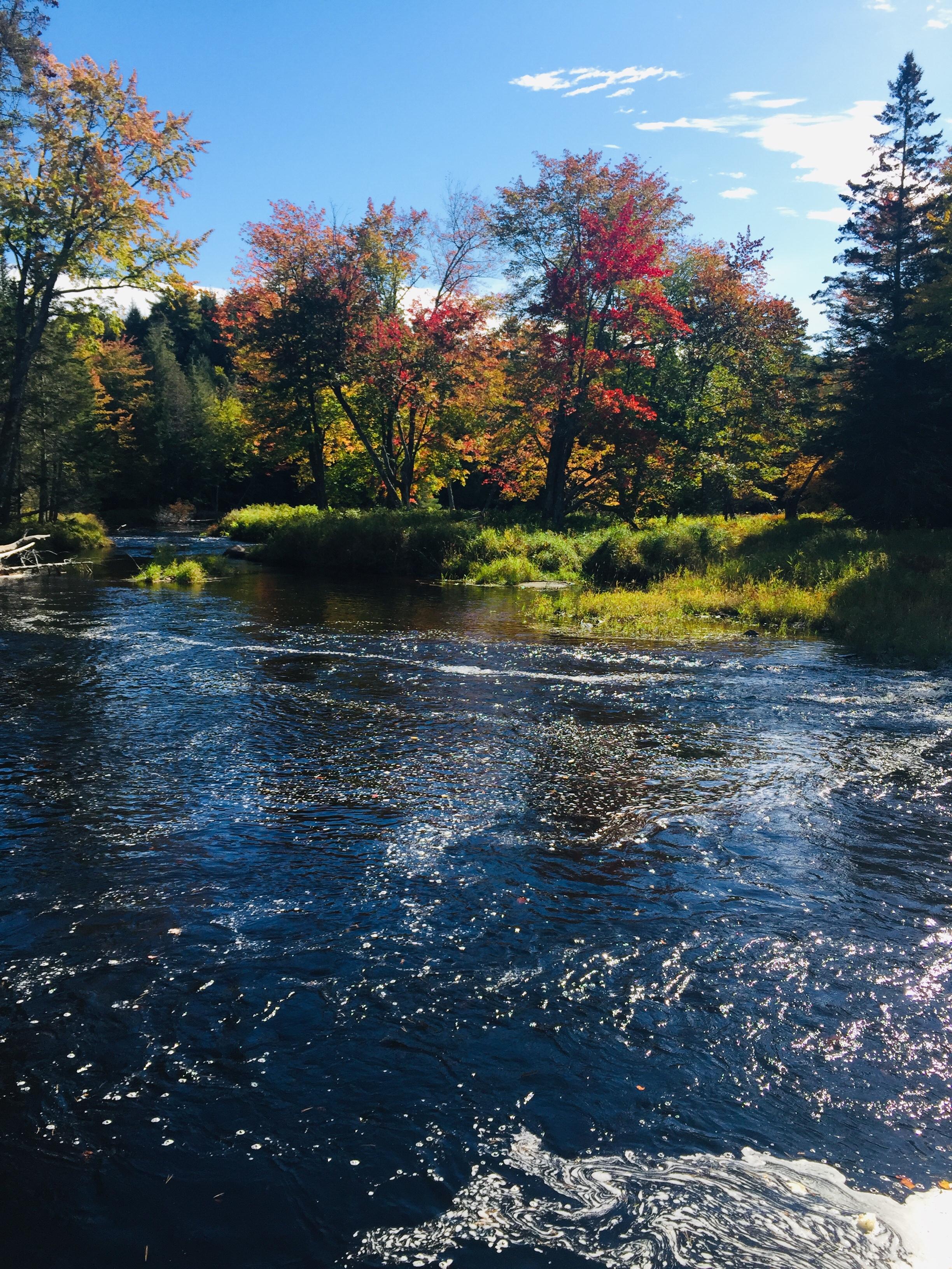 Union River, Mariaville Falls Preserve, ME