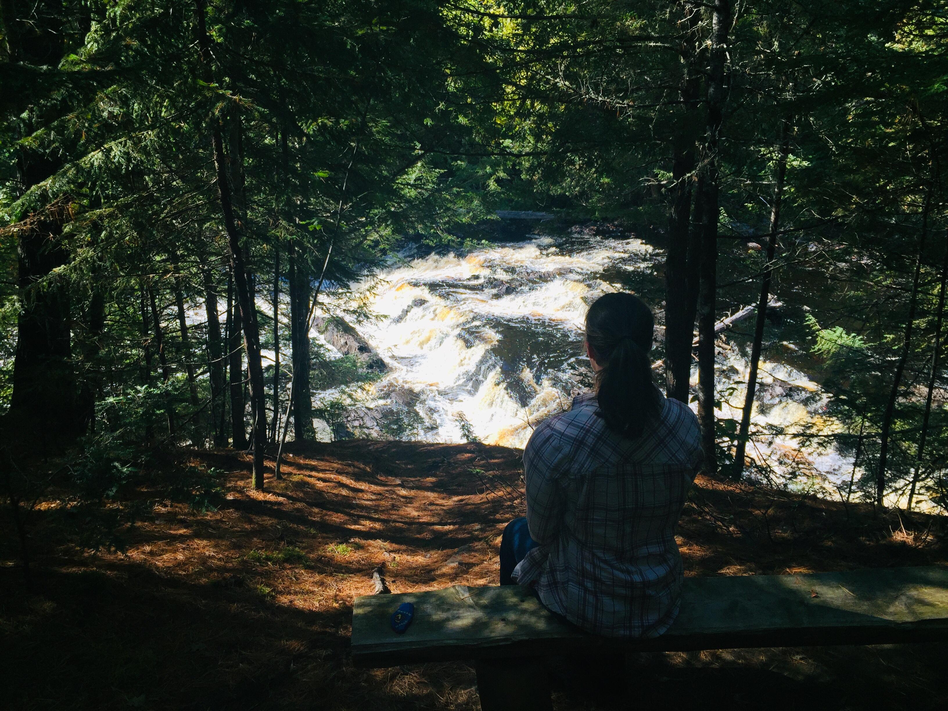 Observation bench, Mariaville Falls Preserve, ME