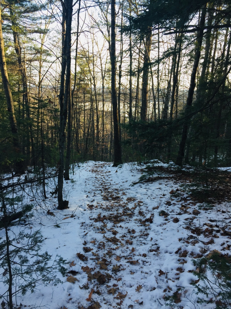 Daniel Brown Trail, Mount Tire'm, Waterford, Maine