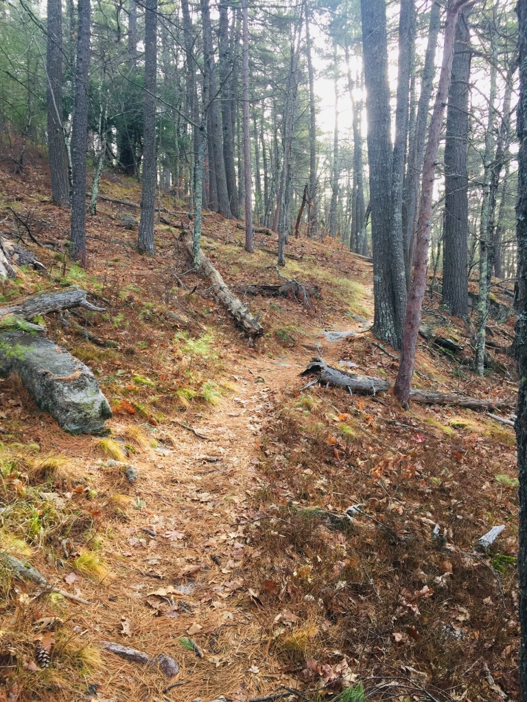 West Ridge Trail, Mount Tom Preserve, Fryeburg, Maine.